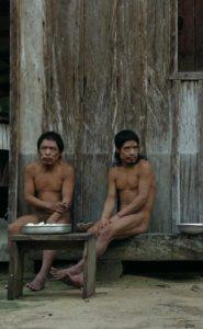 פיריפקורה: המאבק על יערות הגשם