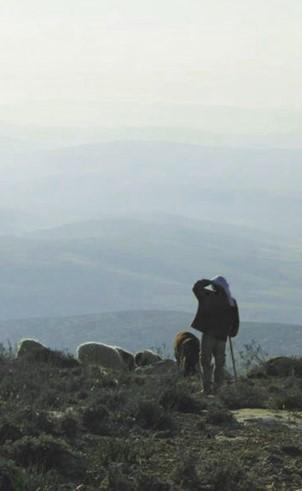 במדבר – דיפטיך תיעודי